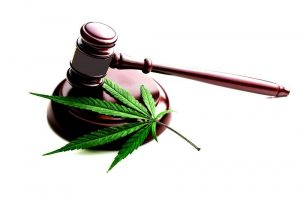 gavel-marijuana-2-1-300x200